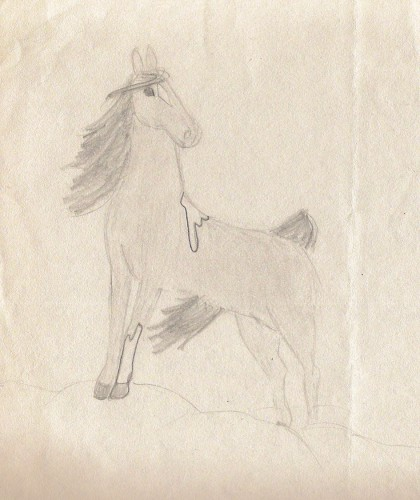 A paint stallion, drawn at age 10.