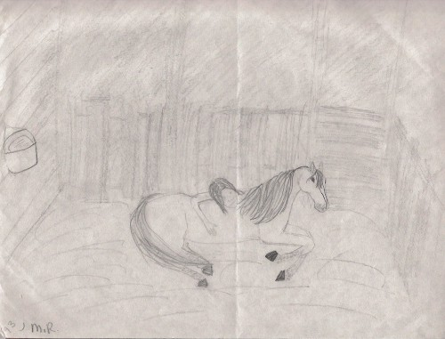 Drawing of me and my Hackney pony, Crown Jewel, at age 11.