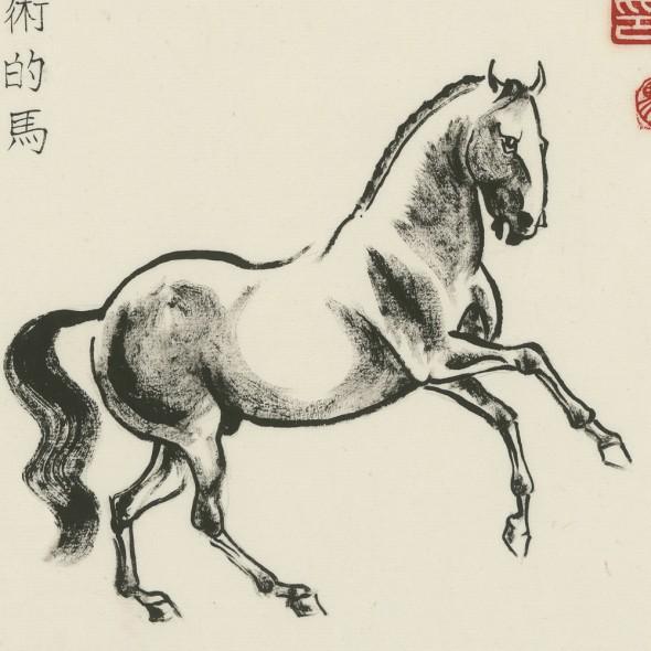 dressage_horse_square