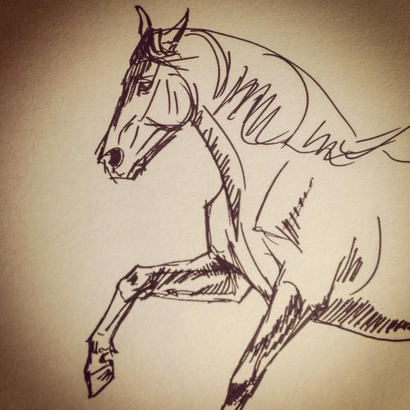 Gallop sketch