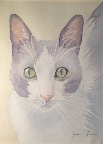 "Original watercolor portrait of a special cat, ""Tonks"".  Approximately 9x12 inches."