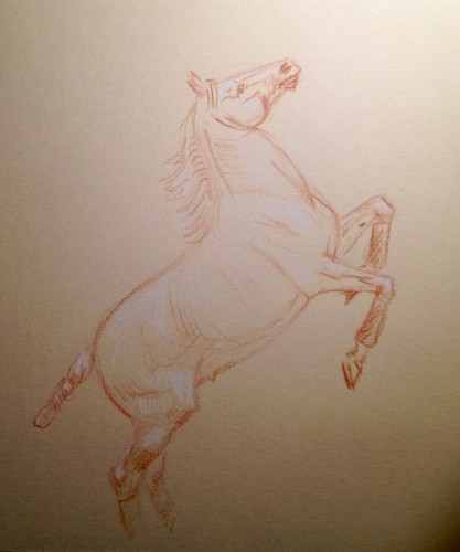 Original crayon sketch of a  circus horse performing at liberty.