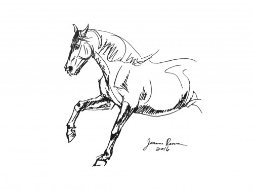 Original ink sketch of a galloping horse, rounding a turn. 9 x 12 inches.