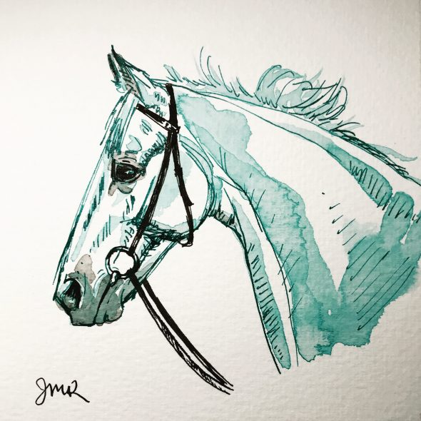turquoise and black ink sketch of a horse head wearing a bridle